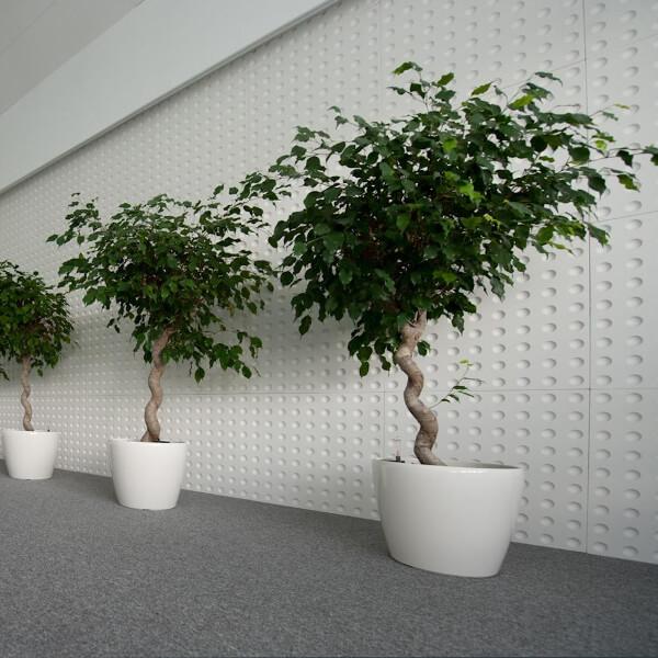 3d-paneeli -loft-malli-10-optic-toimisto-neuvottelutila-huonekasvi
